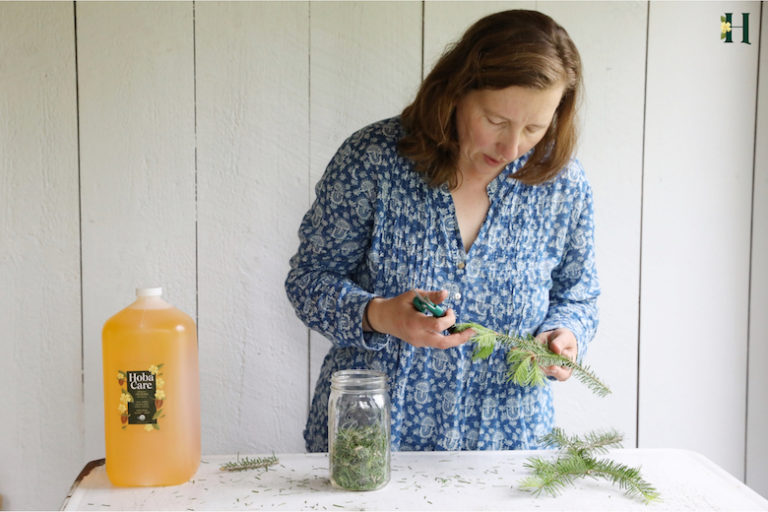 Cari Processing balsam to infuse in jojoba